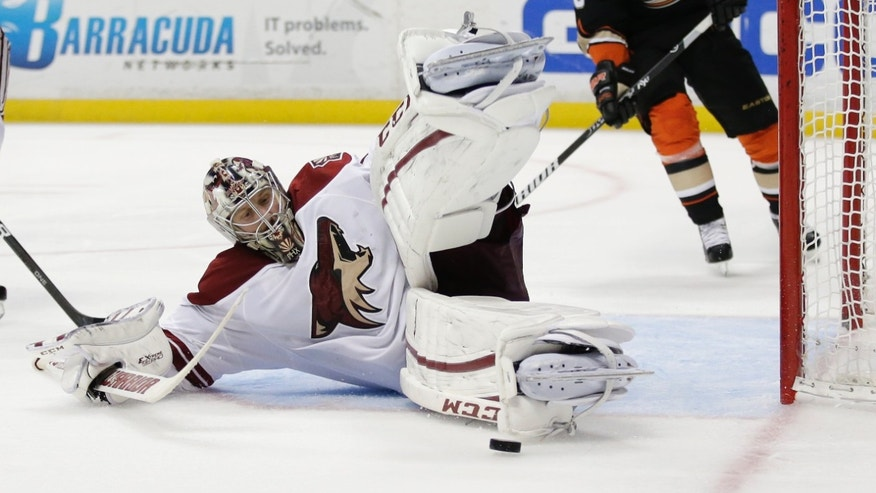 Phoenix Coyotes goalie Jason LaBarbera, left, blocks a shot by Anaheim Ducks right wing Teemu Selanne during the second period of an NHL hockey game in Anaheim, Calif., Saturday, April 27, 2013. (AP Photo/Chris Carlson)