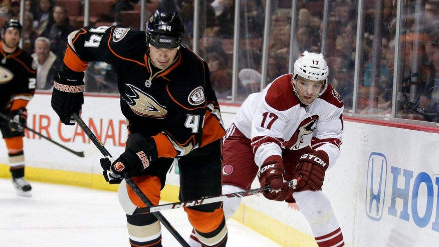 Phoenix Coyotes right wing Radim Vrbata, right, battles Anaheim Ducks defenseman Sheldon Souray for the puck during the first period of an NHL hockey game in Anaheim, Calif., Saturday, April 27, 2013. (AP Photo/Chris Carlson)