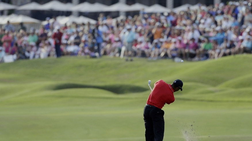 Tiger Woods hits from the 18th fairway during the final round of The Players championship golf tournament at TPC Sawgrass, Sunday, May 12, 2013, in Ponte Vedra Beach, Fla.  Woods won The Players Championship. (AP Photo/Gerald Herbert)