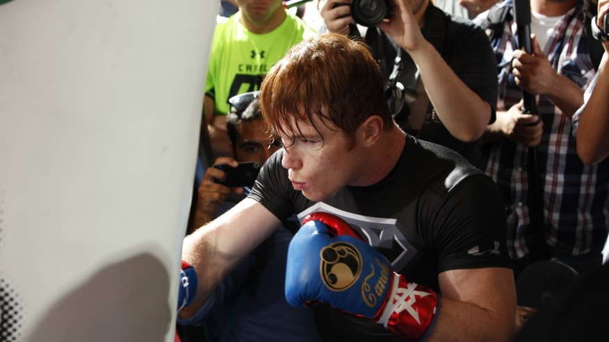 Unified Super Welterweight World Champion Canelo Alvarez holds a media workout on August 27, 2013 in Big Bear Lake, California.