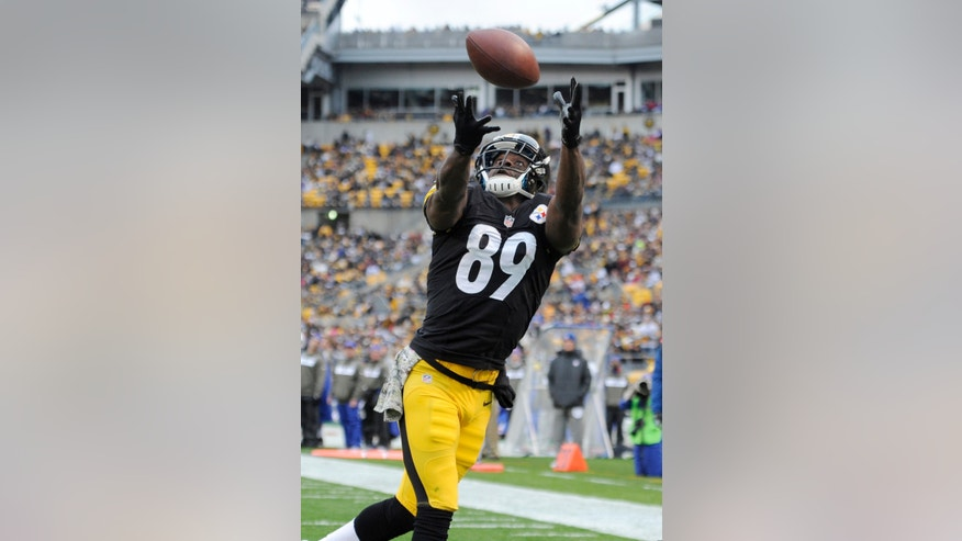 Pittsburgh Steelers' Jerricho Cotchery pulls in a touchdown pass during the first half of an NFL football game against the Buffalo Bills, Sunday, Nov. 10, 2013, in Pittsburgh. (AP Photo/Don Wright)