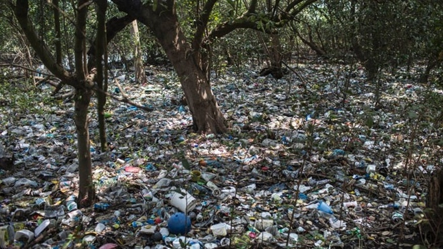 Oct. 23, 2013: In this photo, trash litters a forested area on the shores of Guanabara Bay in Rio de Janeiro, Brazil. Unless Brazil makes headway in cleaning up its waters, experts warn the games could pose health risks to athletes going for the gold and mar what officials hope will be their global showcase event. Rio de Janeiro will host the 2016 Olympic Games.