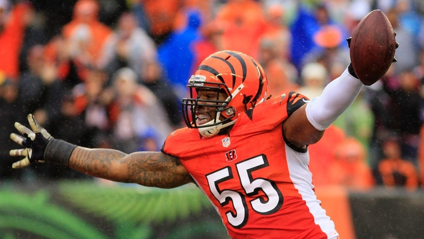 Cincinnati Bengals outside linebacker Vontaze Burfict celebrates after the Bengals sacked Cleveland Browns quarterback Jason Campbell in the second half of an NFL football game, Sunday, Nov. 17, 2013, in Cincinnati. (AP Photo/Tom Uhlman)
