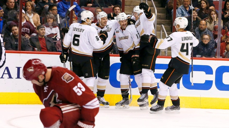 Anaheim Ducks' Dustin Penner (17) celebrates his goal, the second of the game, with teammates Ben Lovejoy (6), Ryan Getzlaf, back second from left, Corey Perry, back second from right, and Hampus Lindholm (47), of Sweden, as Phoenix Coyotes' Derek Morris (53) kneels during the second period of an NHL hockey game Saturday, Nov. 23, 2013, in Glendale, Ariz. (AP Photo/Ross D. Franklin)
