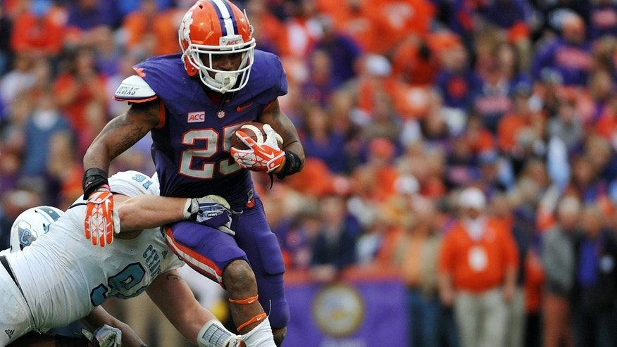 Clemson running back Roderick McDowell (25) runs for yardage as The Citadel defensive lineman Derek Douglas (91) defends during the first half of an NCAA college football game, Saturday, Nov. 23, 2013, in Clemson, S.C. (AP Photo/Rainier Ehrhardt)