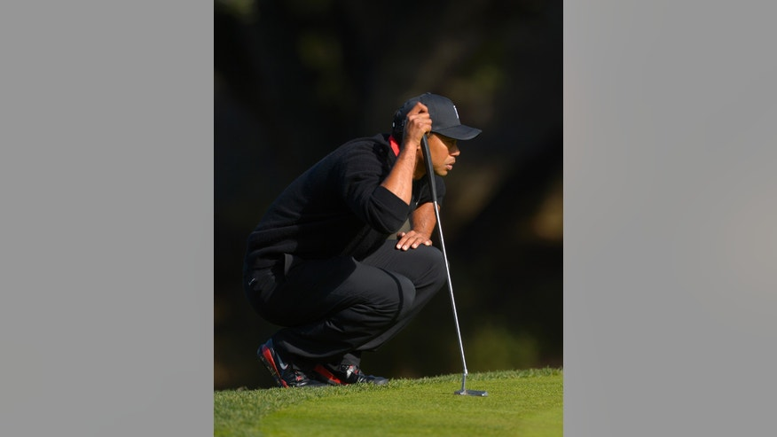 Tiger Woods lines up a putt on the fifth green during the final round of the Northwestern Mutual World Challenge golf tournament at Sherwood Country Club, Sunday, Dec. 8, 2013, in Thousand Oaks, Calif. (AP Photo/Mark J. Terrill)
