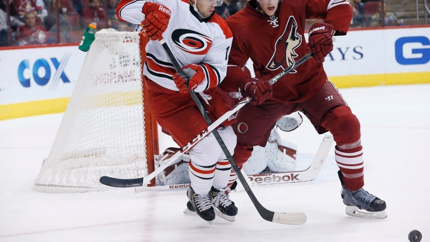 Carolina Hurricanes' Nathan Gerbe (14) battles Carolina Hurricanes' Mike Komisarek (5) for the puck during the first period of an NHL hockey game, Saturday, Dec. 14, 2013, in Glendale, Ariz. (AP Photo/Ross D. Franklin)
