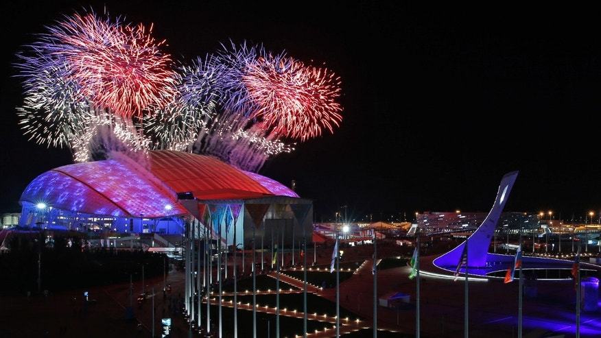 Feb. 7, 2014 - Fireworks are seen over Olympic Park during the opening ceremony of the 2014 Winter Olympics in Sochi, Russia.