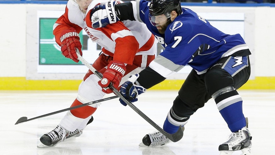 Tampa Bay Lightning defenseman Radko Gudas (7) knocks Detroit Red Wings left wing Justin Abdelkader (8) off the puck during the first period of an NHL hockey game, Saturday, Feb. 8, 2014, in Tampa, Fla. (AP Photo/Chris O'Meara)
