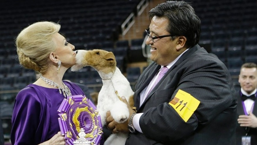 Judge Betty Regina Leininger, left, and handler Gabriel Rangel, pose with Sky, a wire fox terrier, after winning best in show at the Westminster Kennel Club dog show, Tuesday, Feb. 11, 2014, in New York. (AP Photo/Frank Franklin II)