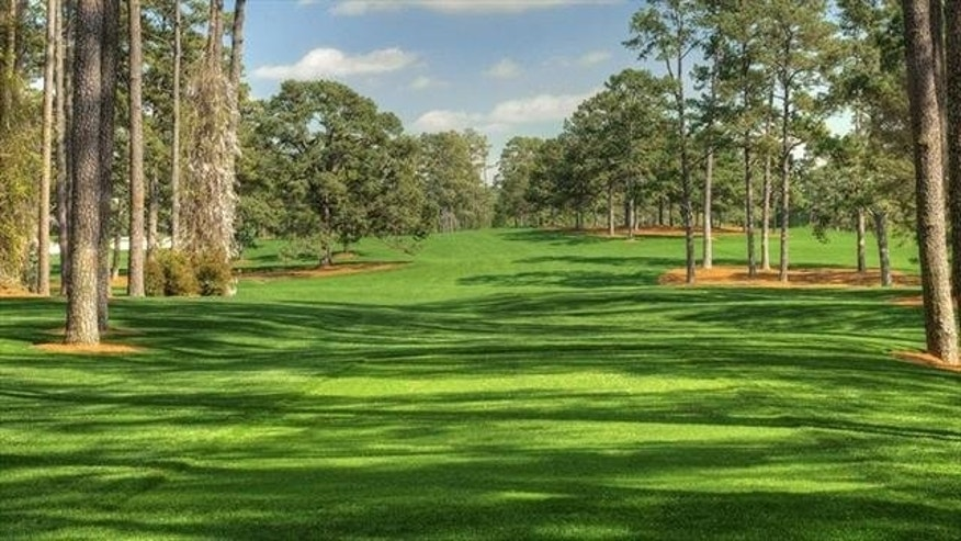 A view of the 17th hole at the Augusta National Golf Club. The Eisenhower Tree can be seen on the left side of the fairway in the background. (Augusta National Golf Club)
