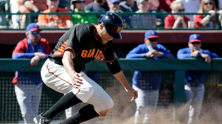San Francisco Giants' Michael Morse celebrates after scoring on a two-run single by Pablo Sandoval during the fourth inning of a spring exhibition baseball game against the Chicago Cubs in Scottsdale, Ariz., Monday, March 10, 2014. (AP Photo/Chris Carlson)