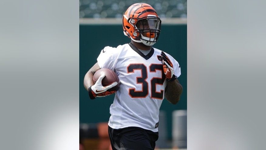 Cincinnati Bengals second round draft pick Jeremy Hill, a running back from Louisiana State,  runs the ball during an NFL football organized team activity, Tuesday, May 27, 2014, in Cincinnati.  (AP Photo/Al Behrman)
