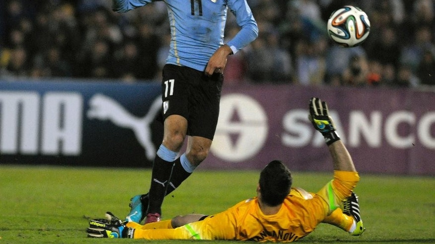 Uruguay's Cristhian Stuani, left, kicks to score a goal over Slovenia's Samir Handanovic during a friendly soccer match in Montevideo, Uruguay, Wednesday, June 4, 2014. (AP Photo/Matilde Campodonico)