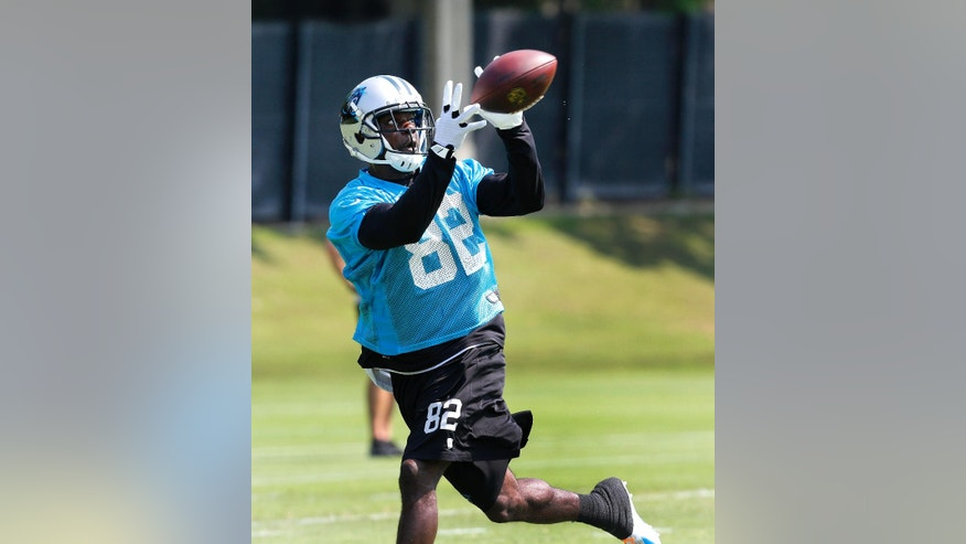 Carolina Panthers wide receiver Jerricho Cotchery catches a pass during NFL football practice in Charlotte, N.C. on Tuesday, June 17, 2014.  (AP Photo/Nell Redmond)