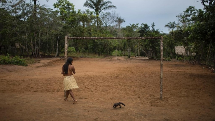 In this May 24, 2014 photo, an girl plays with a small monkey near a soccer goal in the Tatuyo indigenous community near Manaus, Brazil. While they normally wear the shorts, t-shirts and flip-flops that are standard fare throughout Brazil, the villagers change into their ceremonial finest to receive the tourists, the men and boys donning loincloths embellished in the back with bunches of freshly cut leaves and rattling anklets made from hollow seeds, the women and girls wearing graceful skirts of dried grass. (AP Photo/Felipe Dana)