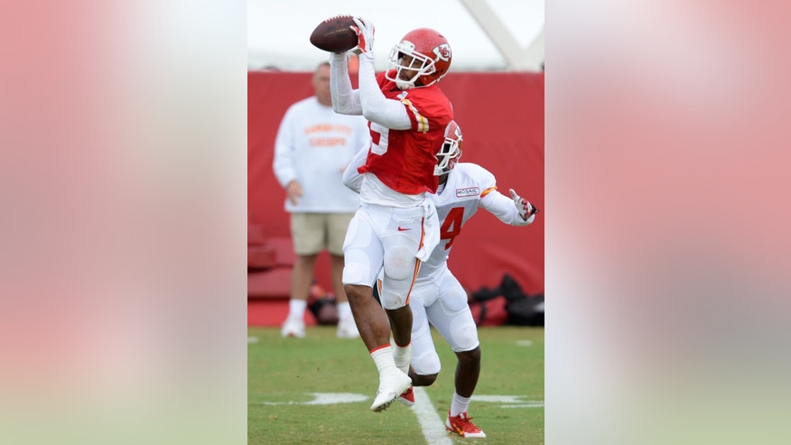 Kansas City Chiefs wide receiver Kyle Williams (19) catches a pass during an NFL training camp practice at Missouri Western State University in St. Joseph, Mo., Friday, Aug. 1, 2014.  (AP Photo/The St. Joseph News-Press, Sait Serkan Gurbuz)   MANDATORY CREDIT