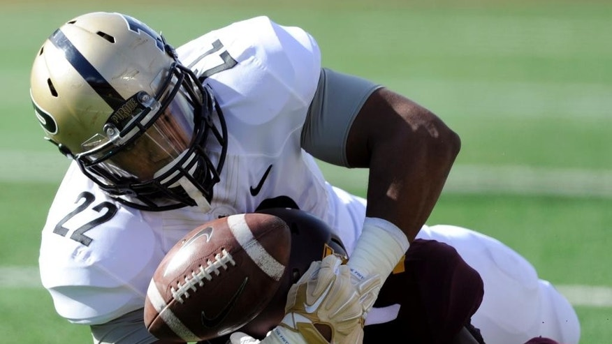Purdue running back Jonathan Curry (22) attempts to recover a fumble during the second quarter of an NCAA college football game against Minnesota, Saturday, Oct. 18, 2014, in Minneapolis. (AP Photo/Hannah Foslien)