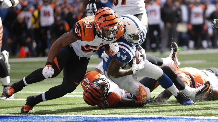 Indianapolis Colts running back Ahmad Bradshaw (44) dives in for a 10-yard touchdown reception against Cincinnati Bengals linebacker Marquis Flowers (53) during the second half of an NFL football game Sunday, Oct. 19, 2014, in Indianapolis. (AP Photo/AJ Mast)