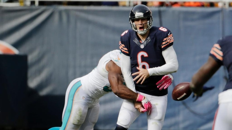 Miami Dolphins defensive end Cameron Wake (91) strips the ball forcing Chicago Bears quarterback Jay Cutler (6) to fumble during the second half of an NFL football game Sunday, Oct. 19, 2014 in Chicago. Wake recovered the ball. (AP Photo/Charles Rex Arbogast)
