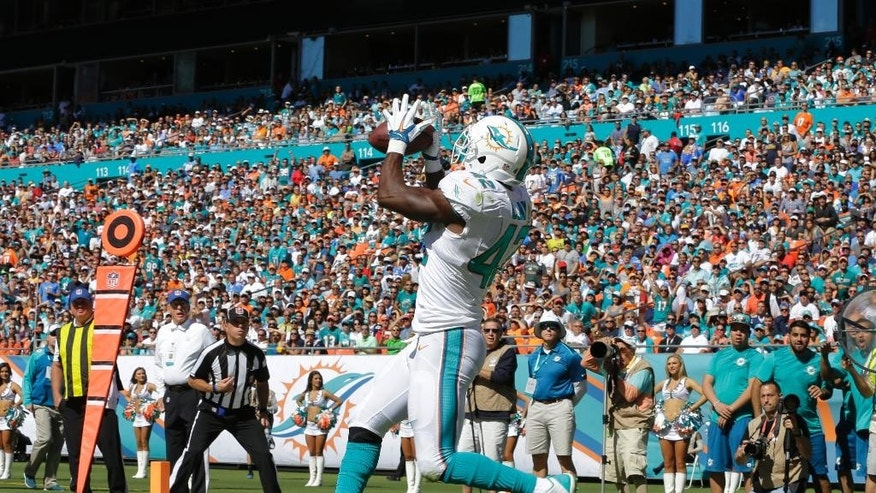 Miami Dolphins tight end Charles Clay (42) catches a touchdown pass during the first half of an NFL football game against the San Diego Chargers, Sunday, Nov. 2, 2014, in Miami Gardens, Fla.  (AP Photo/Alan Diaz)