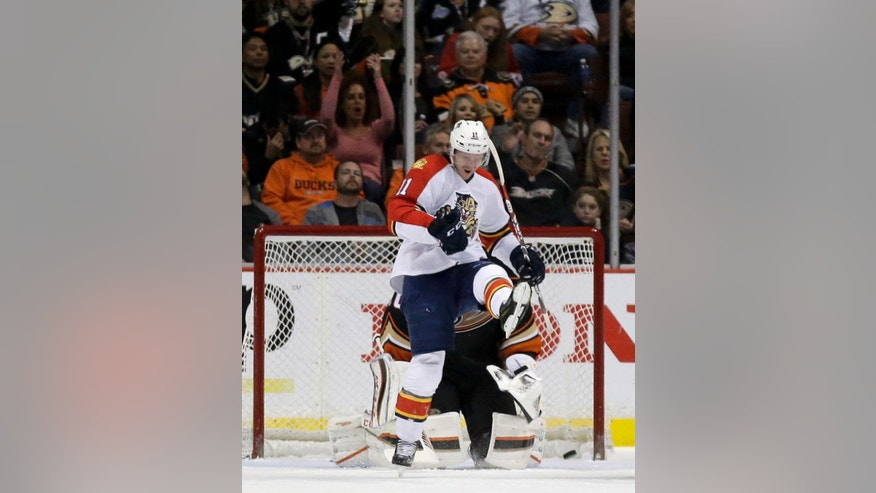 Florida Panthers center Jonathan Huberdeau celebrates after scoring past Anaheim Ducks goalie Frederik Andersen during the second period of an NHL hockey game in Anaheim, Calif., Sunday, Nov. 16, 2014. (AP Photo/Chris Carlson)
