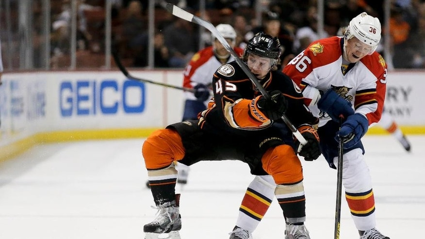 Anaheim Ducks defenseman Sami Vatanen, left, and Florida Panthers left wing Jussi Jokinen battle for the puck during the first period of an NHL hockey game in Anaheim, Calif., Sunday, Nov. 16, 2014. (AP Photo/Chris Carlson)