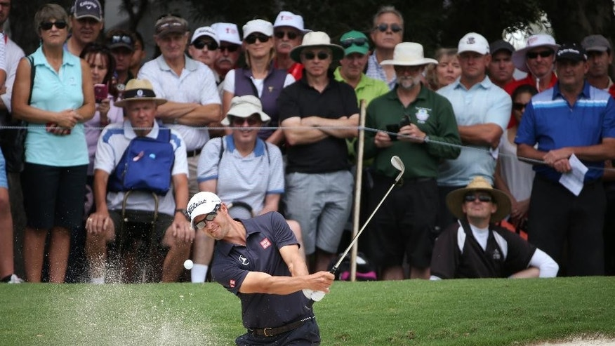 Australia's Adam Scott hits out of a bunker on the 7th green during the second round of the Australian Open Golf championship in Sydney, Friday, Nov. 28, 2014. (AP Photo/Rick Rycroft)