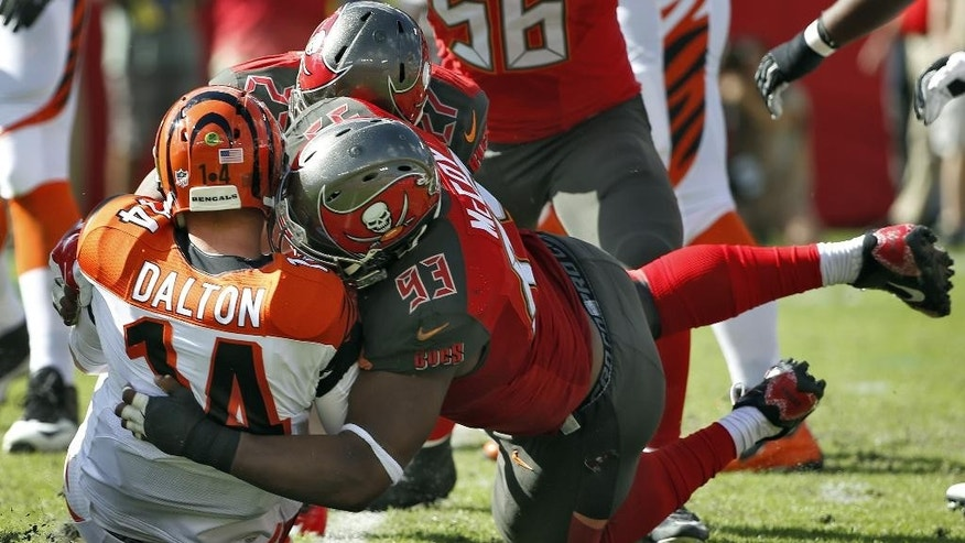 Tampa Bay Buccaneers defensive tackle Gerald McCoy (93) sacks Cincinnati Bengals quarterback Andy Dalton (14) during the first quarter of an NFL football game Sunday, Nov. 30, 2014, in Tampa, Fla. (AP Photo/Brian Blanco)
