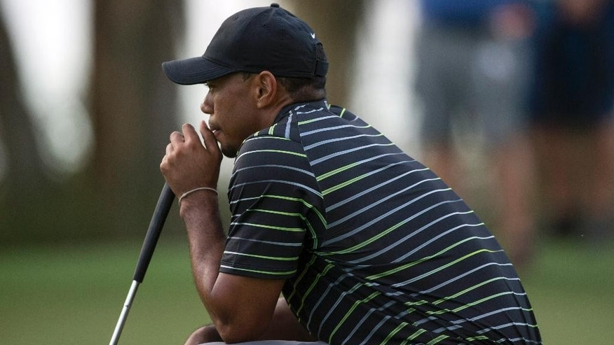 Tiger Woods takes a long look at his ball on the 18th hole during the first round of the Hero World Challenge golf tournament on Thursday, Dec. 4, 2014, in Windermere, Fla. Woods finished the day in last place.  (AP Photo/Willie J. Allen Jr.)