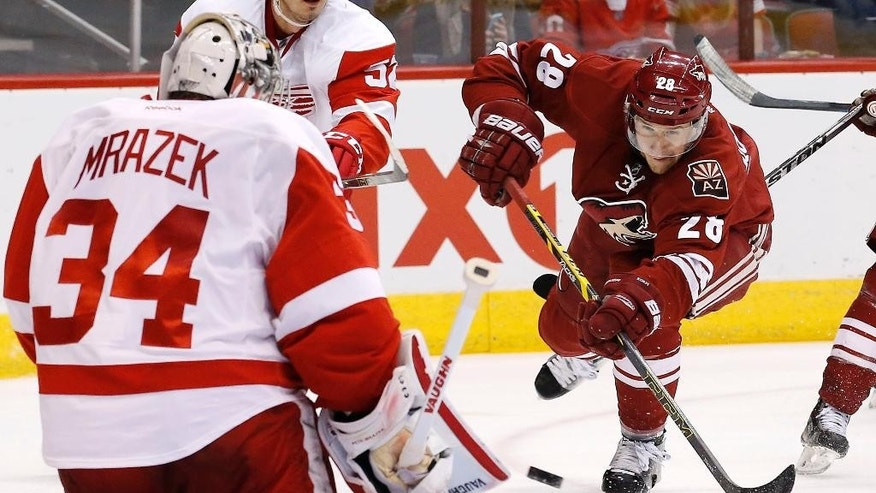 Detroit Red Wings' Petr Mrazek (34), of the Czech Republic, prepares to make a save on a shot by Arizona Coyotes' Lauri Korpikoski (28), of Finland, during the second period of an NHL hockey game Saturday, Feb. 7, 2015, in Glendale, Ariz. (AP Photo/Ross D. Franklin)