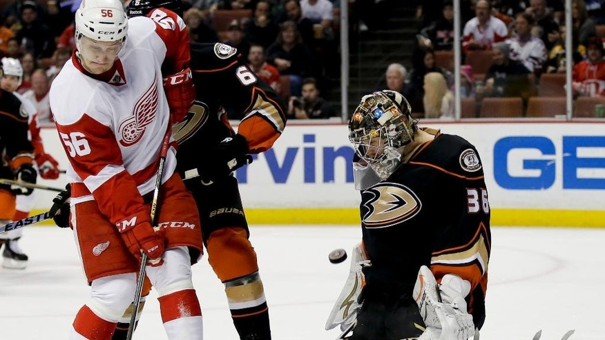 Anaheim Ducks goalie John Gibson, right, blocks a shot by Detroit Red Wings left wing Teemu Pulkkinen during the first period of an NHL hockey game in Anaheim, Calif., Monday, Feb. 23, 2015. (AP Photo/Chris Carlson)