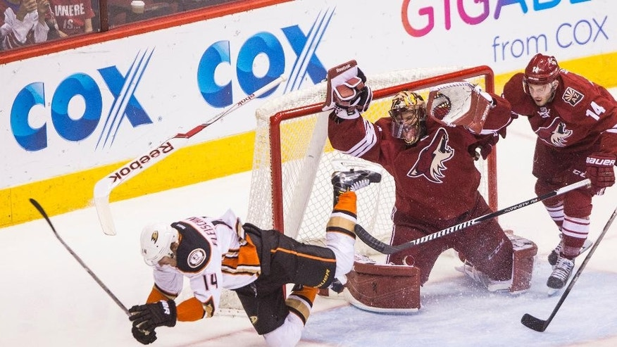 Anaheim Ducks' Tomas Fleischmann (14) knocks the stick out of the hands or Arizona Coyotes' Mike Smith's hands during an NHL hockey game Saturday, April 11, 2015, in Glendale, Ariz. (AP Photo/The Arizona Republic, Patrick Breen)