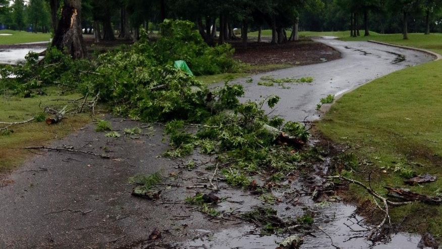 A fallen tree blocks the cart path on the 16th hole after a severe storm passed by suspending play the third round of the Zurich Classic PGA golf tournament, Saturday, April 25, 2015, in Avondale, La. (AP Photo/Butch Dill)
