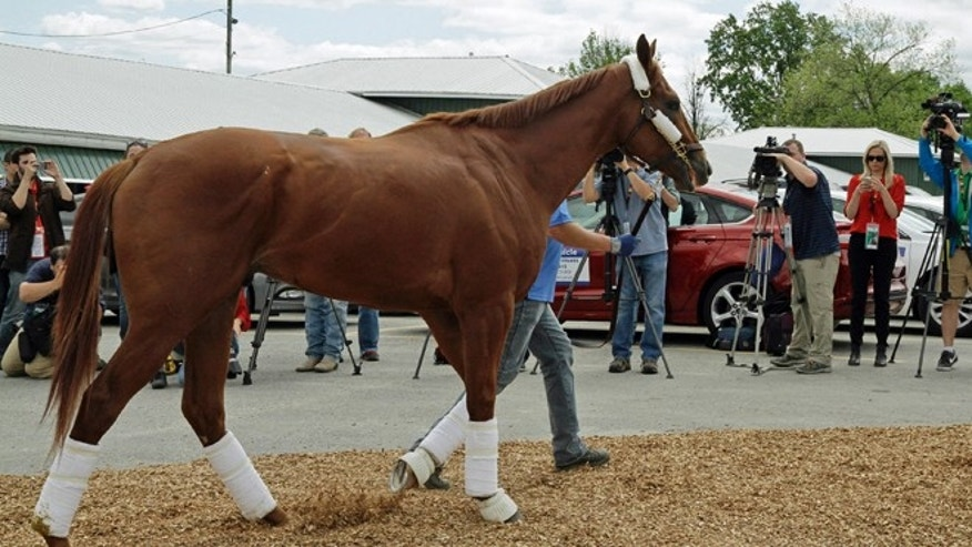 May 13: Kentucky Derby third-place finisher Dortmund, trained by Bob Baffert, walks from the van to the stakes barn after his arrival at Pimlico Race Course in Baltimore.