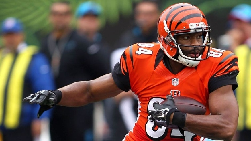 CINCINNATI, OH - OCTOBER 12: Jermaine Gresham #84 of the Cincinnati Bengals carries the ball during the second quarter against the Carolina Panthers at Paul Brown Stadium on October 12, 2014 in Cincinnati, Ohio. (Photo by John Grieshop/Getty Images)
