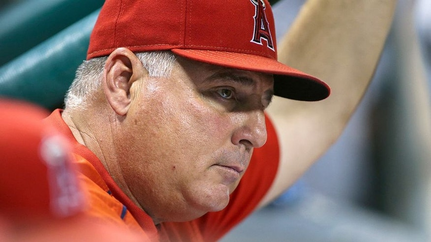 <p>Jul 30, 2015; Houston, TX, USA; Los Angeles Angels manager Mike Scioscia (14) looks on during the game against the Houston Astros at Minute Maid Park. Mandatory Credit: Troy Taormina-USA TODAY Sports</p>