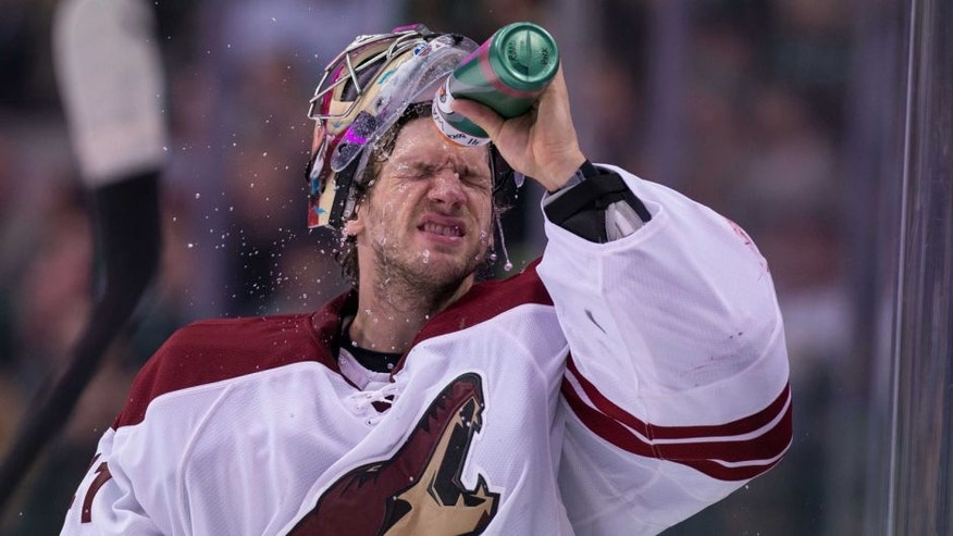 Feb 8, 2014; Dallas, TX, USA; Phoenix Coyotes goalie Mike Smith (41) waits for play to resume against the Dallas Stars during the third period at the American Airlines Center. The Stars defeated the Coyotes 2-1. Mandatory Credit: Jerome Miron-USA TODAY Sports