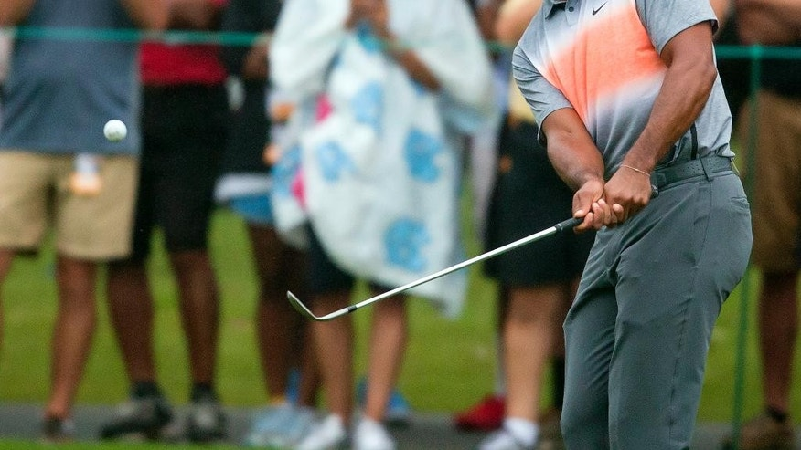Tiger Woods chips to the green at the seventh hole during the pro-am at the Wyndham Championship golf tournament, Wednesday, Aug. 19, 2015, at Sedgefield Country Club in Greensboro, N.C. (AP Photo/Rob Brown)