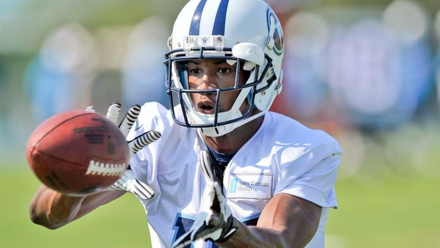 Jul 26, 2014; Nashville, TN, USA; Tennessee Titans wide receiver Justin Hunter (15) catches a pass during training camp at Saint Thomas Sports Park. Mandatory Credit: Jim Brown-USA TODAY Sports