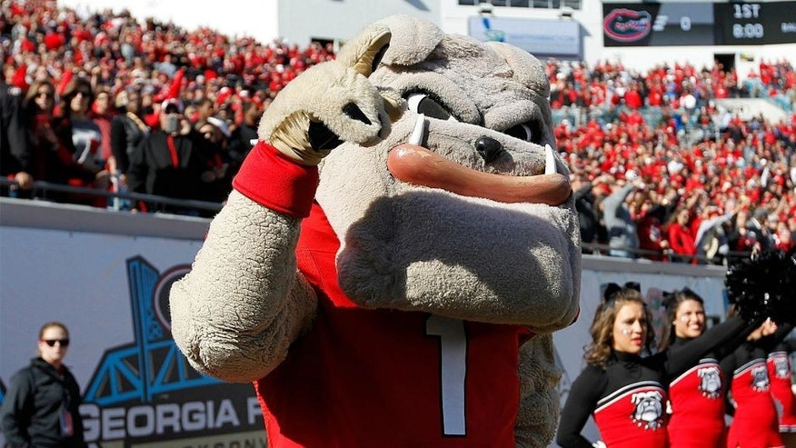 Nov 1, 2014; Jacksonville, FL, USA; Georgia Bulldogs mascot Hairy Dawg during the first quarter against the Florida Gators at EverBank Field. Mandatory Credit: Kim Klement-USA TODAY Sports
