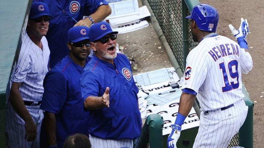 Chicago Cubs manager Joe Maddon, center, celebrates with Jonathan Herrera (19) after he hit a home run against the Arizona Diamondbacks in the sixth inning of a baseball game on Sunday, Sept. 6, 2015, in Chicago. (AP Photo/Matt Marton)