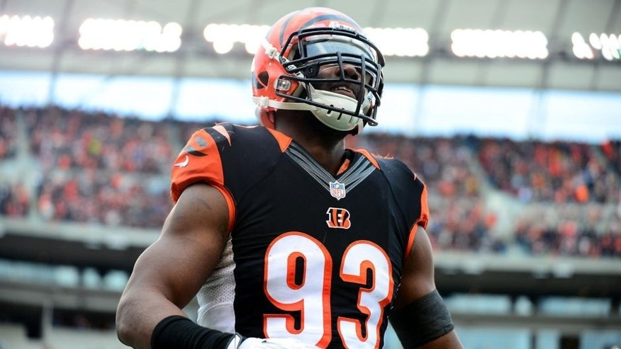 Dec 29, 2013; Cincinnati, OH, USA; Cincinnati Bengals defensive end Michael Johnson (93) against the Baltimore Ravens at Paul Brown Stadium. Bengals defeated the Ravens 34-17. Mandatory Credit: Andrew Weber-USA TODAY Sports