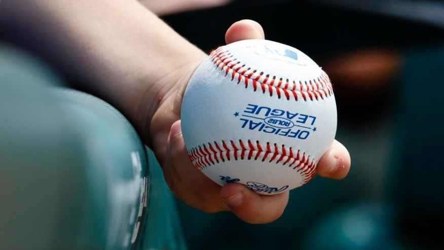 Jul 5, 2015; Detroit, MI, USA; Fan holds baseball before the game between the Detroit Tigers and the Toronto Blue Jays at Comerica Park. Mandatory Credit: Rick Osentoski-USA TODAY Sports