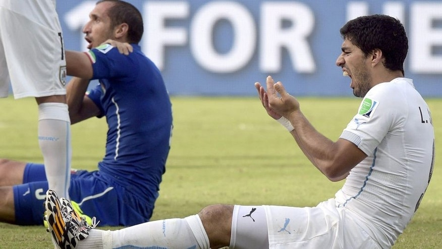 Uruguay's forward Luis Suarez (R) reacts after clashing with Italy's defender Giorgio Chiellini during a Group D football match between Italy and Uruguay at the Dunas Arena in Natal during the 2014 FIFA World Cup on June 24, 2014. Uruguay won 1-0. AFP PHOTO/ DANIEL GARCIA (Photo credit should read DANIEL GARCIA/AFP/Getty Images)