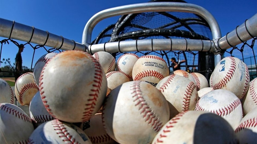 Pittsburgh Pirates minor league players take batting practice during an informal spring training baseball workout in Bradenton, Fla., Monday, Feb. 16, 2015. The first official workout for pitchers and catchers is Thursday, Feb. 19. (AP Photo/Gene J. Puskar)