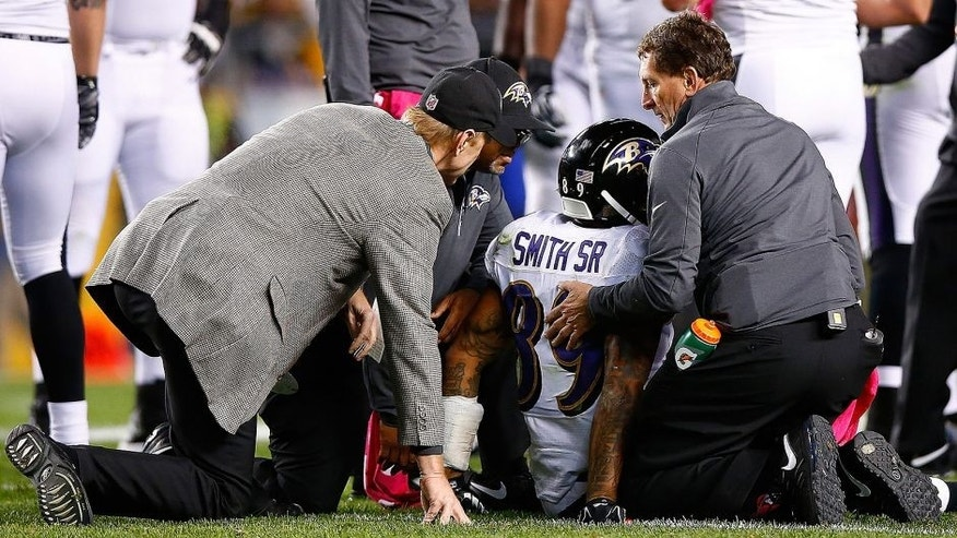 <p>PITTSBURGH, PA - OCTOBER 01: Medical personnel tend to Steve Smith Sr. #89 of the the Baltimore Ravens for a potential injury during the game against the Pittsburgh Steelers at Heinz Field on October 1, 2015 in Pittsburgh, Pennsylvania. (Photo by Jared Wickerham/Getty Images)</p>