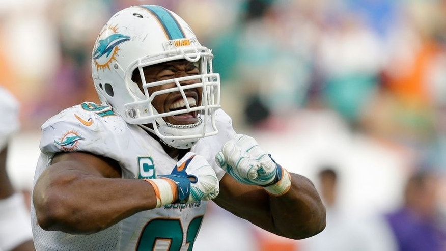 Miami Dolphins defensive end Cameron Wake celebrates after sacking Minnesota Vikings quarterback Teddy Bridgewater during the second half of an NFL football game, Sunday, Dec. 21, 2014 in Miami Gardens, Fla. The Dolphins won 37-35. (AP Photo/Wilfredo Lee)