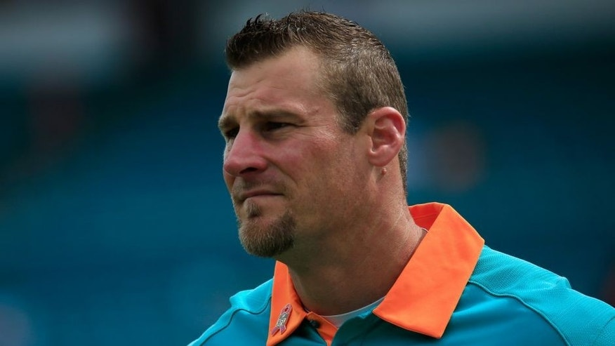 MIAMI GARDENS, FL - OCTOBER 25: Dan Campbell head coach of the Miami Dolphins looks on prior to a game against the Houston Texans at Sun Life Stadium on October 25, 2015 in Miami Gardens, Florida. (Photo by Chris Trotman/Getty Images)