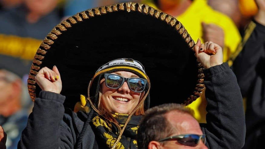 WEST LAFAYETTE, IN - NOVEMBER 09: An Iowa Hawkeyes fan cheers in the stands during the game against the Purdue Boilermakers at Ross-Ade Stadium on November 9, 2013 in West Lafayette, Indiana. (Photo by Michael Hickey/Getty Images)